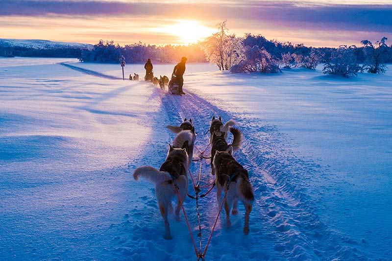 discover-lapland-package-teaser